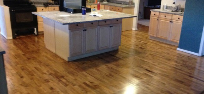 Maple Hardwood Floor Refinish